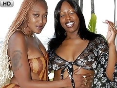 Huge Fat Asses On These Cunt Addicted Ebony Lesbian Sluts